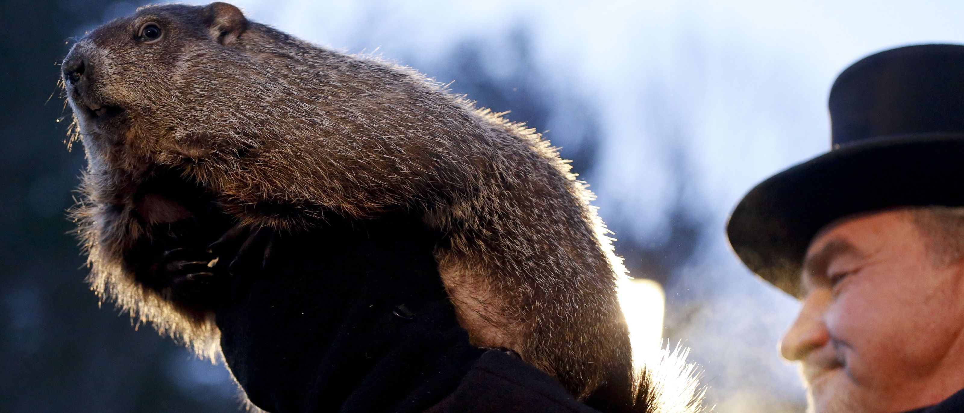 groundhog-day.jpg