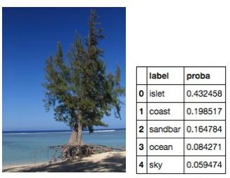 Label islet coast ocean