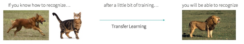 Transfer learning example