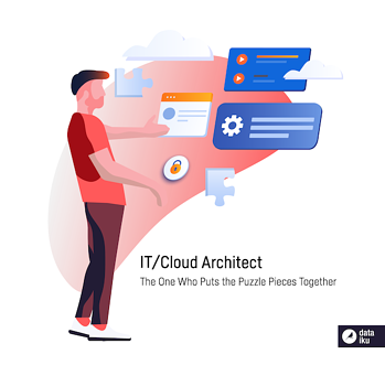 IT/cloud architect