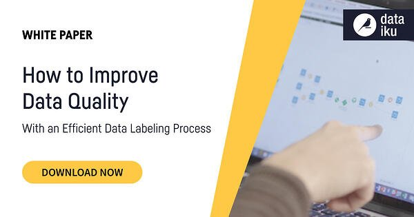 Data Quality White Paper cover with screenshot of Dataiku on screen