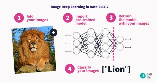 image classification deep learning in Dataiku DSS