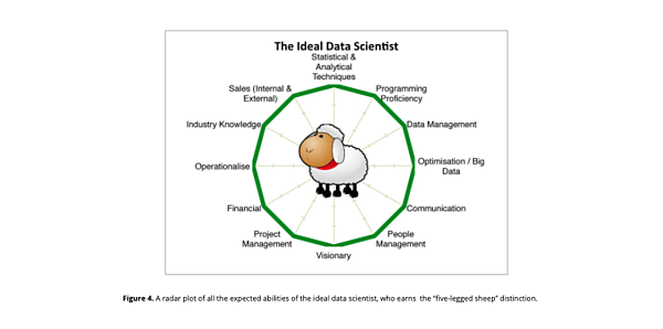 The ideal data scientist