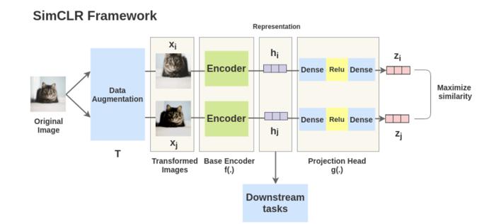 SimCLR framework