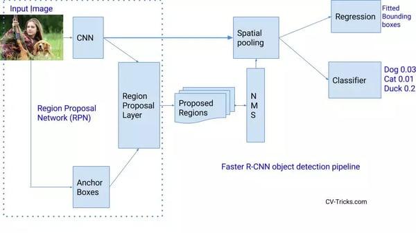 region proposal network