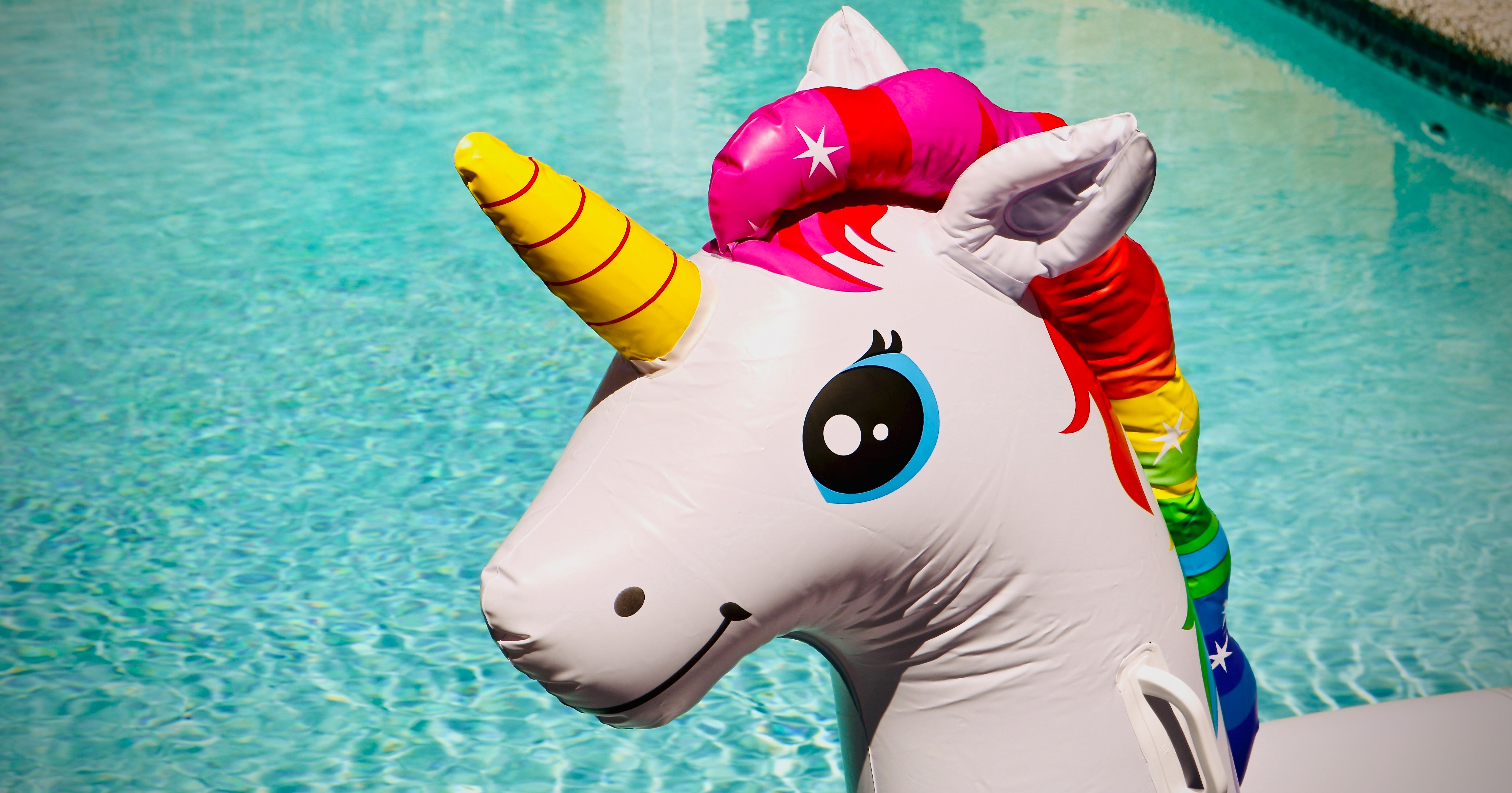 inflatable unicorn in a pool