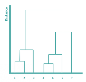 Dendrogram to show the hierarchical relationships