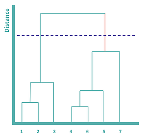Dendrogram to find the number of clusters
