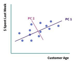 money spent and customer age