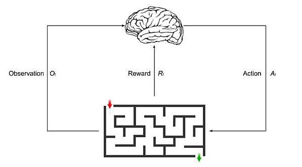 the process of reinforcement learning