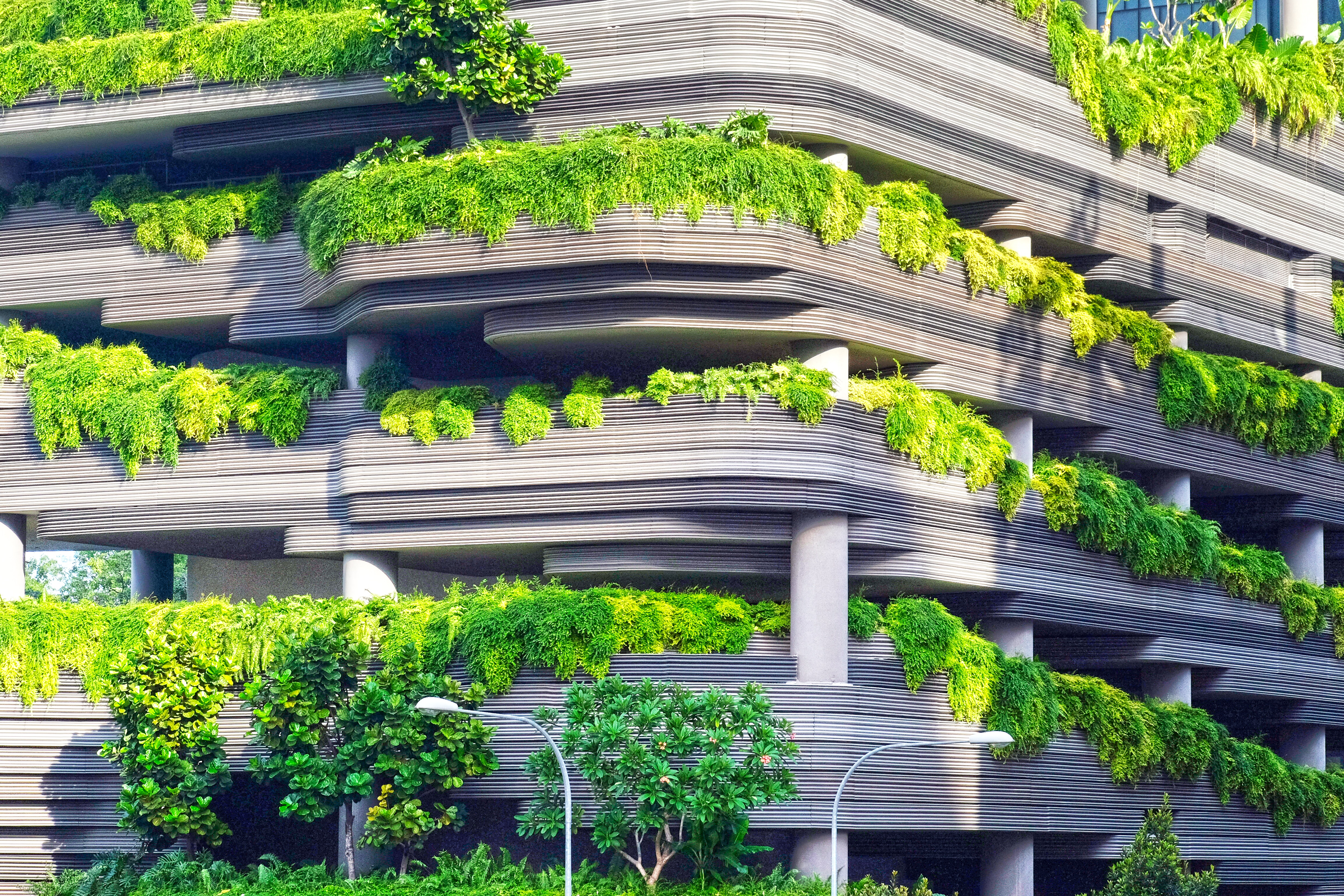 contemporary architecture building with greenery