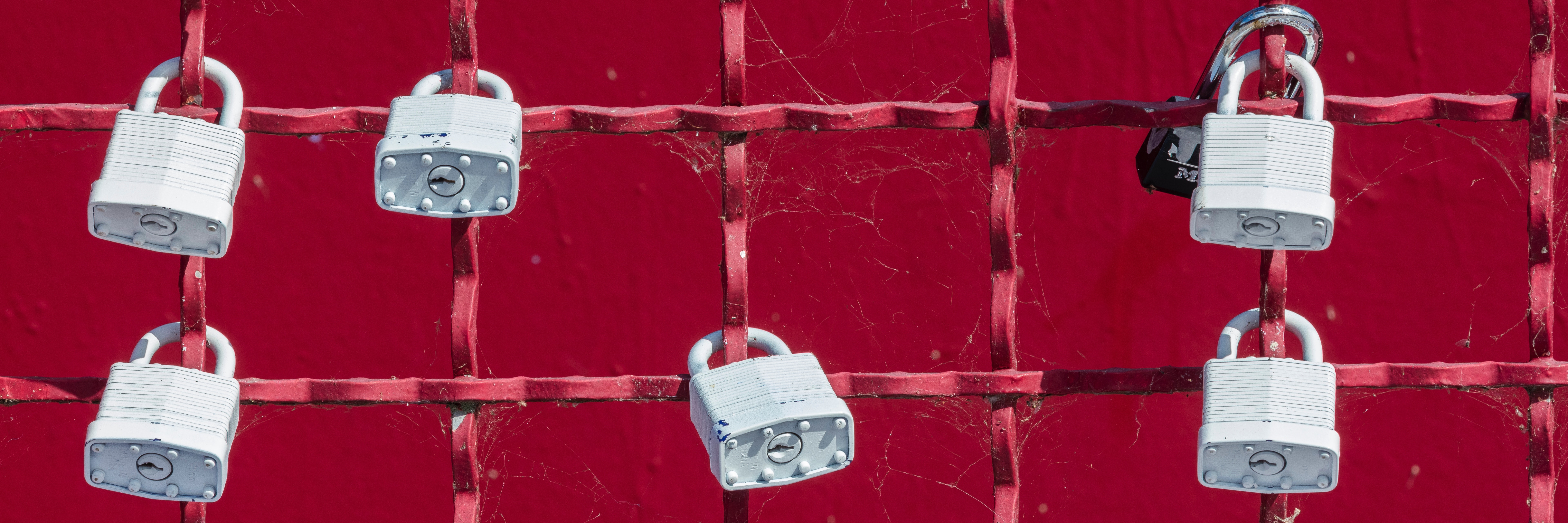 privacy-locks