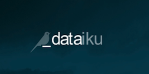 Dataiku Brand Identity: Uniting Business Analyst and Data Scientist