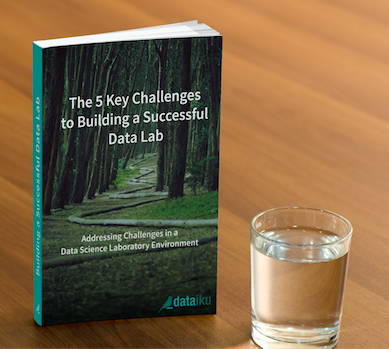 eBook: The 5 Key Challenges to Building a Successful Data Lab